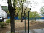 likely the only rain in this spring 2015 in Qiqihar,northeaster