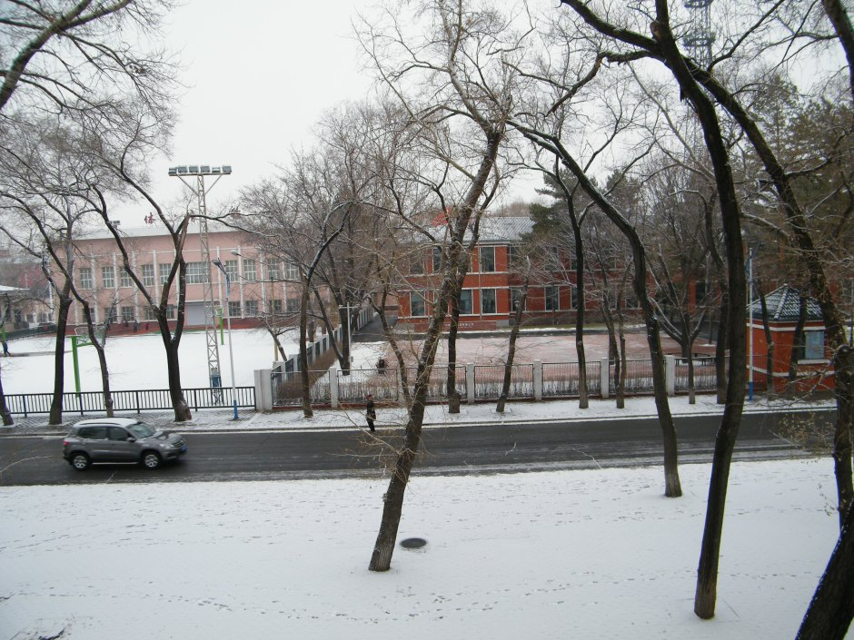 2020 1st snow in Qiqihar